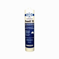 PROSIL 10 300gm CLEAR Oxime Neutral Cure Silicone - Click for more info